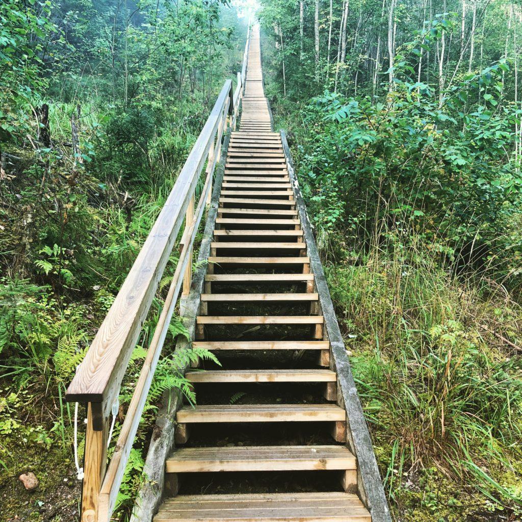 Aurinkovuoren portaat