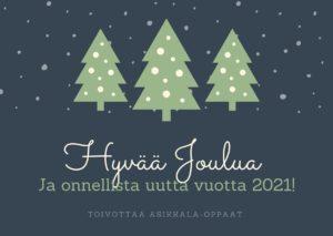Hyvää joulua ja onnellista uutta vuotta toivottaa Asikkala-oppaat